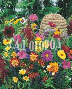 Семена цветов однолетних