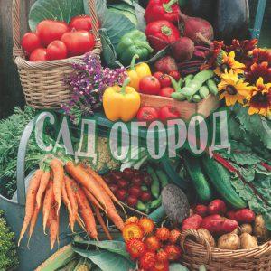 Семена овощей Германии, Голландии, Турции