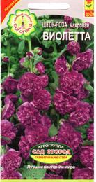 violeta_1